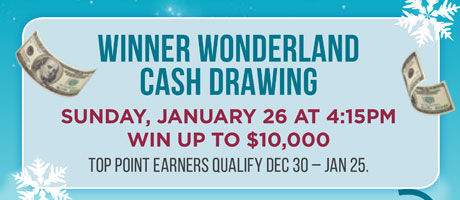 Winner Wonderland Cash Drawing